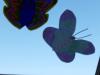 viber_image_2020-04-03_10-15-40